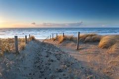 Sand path to North sea coast at sunset Stock Image