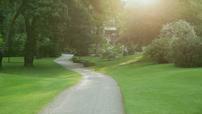 a sand path with trees and bushes around on a sunny day stock video footage