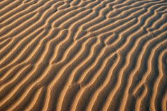 Sand Pattern. Closeup of beautiful curves background  in the Golden Desert Stock Photography