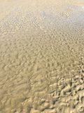 Sand pattern at the beach. In Cape May New Jersey royalty free stock photography