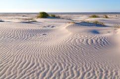 Sand pattern on coastal dune Royalty Free Stock Images