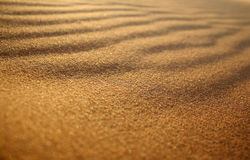 Sand Pattern Detail. Detailed image of line patterns in the desert sand at dusk Royalty Free Stock Photography