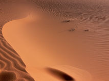 Sand Pattern Details Royalty Free Stock Image