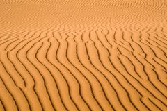 Sand pattern, riffles in desert sand. stock photos