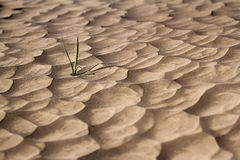 Sand pattern of volcano Royalty Free Stock Image