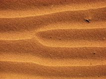 Sand Patterns Stock Photography