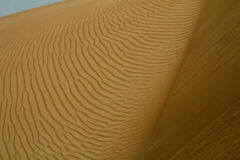 Sand patterns at a desert in Dubai, UAE. During the day Royalty Free Stock Photo