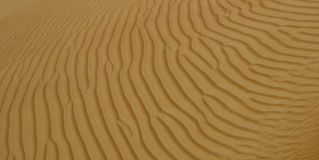 Sand patterns at a desert in Dubai, UAE. During the day Royalty Free Stock Images