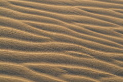 Sand patterns in dunes of Maspalomas Royalty Free Stock Images