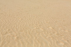 Sand patterns after wind  on the Nature reserve, Park Natural, Corralejo Royalty Free Stock Photos
