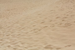 Sand patterns after wind  on the Nature reserve, Park Natural, Corralejo, Fuerteventura, Royalty Free Stock Photo