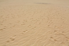 Sand patterns after wind  on the Nature reserve, Park Natural, Corralejo, Fuerteventura Stock Photo