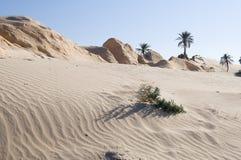 Sand and petrified dunes. Petrified dunes in Tunisia, near Douz Royalty Free Stock Image