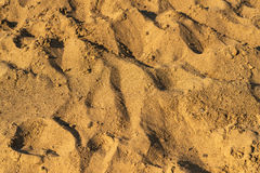 Sand pile. Stock Image