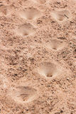 Sand pit traps. Stock Photo