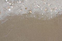 Sand. A plenty of shells on the sea shore Royalty Free Stock Photography
