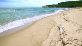 Sand point beach stock footage