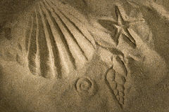 Sand print Royalty Free Stock Photos