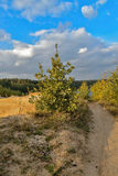 Sand quarry in the early autumn. Royalty Free Stock Photography