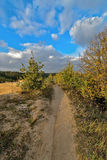 Sand quarry in the early autumn. Stock Photo