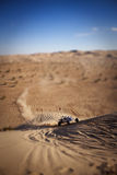Sand Rail. A Sand Rail coming up the side of a dune Royalty Free Stock Images
