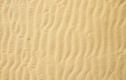 Sand ripple. On the beach stock photo