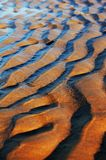 Sand Ripples. Ripples in the sand created by the tide Stock Images