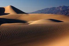 Sand ripples. Ripples in the desert sand dunes during sunset (Death Valley national park, California, USA Stock Images