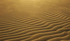 Sand Ripples. Pronounced sand ripples at dusk Stock Photos
