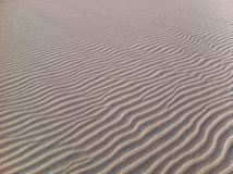 Sand Ripples. On a beach Royalty Free Stock Images