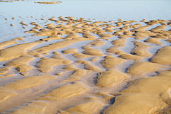 Sand ripples in a beach Stock Image