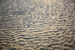 The sand  ripples. The beautiful lines of sand Royalty Free Stock Photography