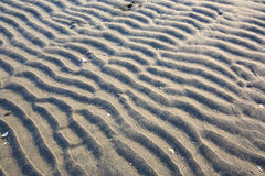 The sand  ripples. The beautiful lines of sand Stock Image