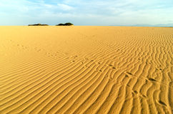 Sand Ripples and Footprints Royalty Free Stock Photos
