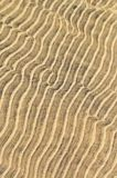 Sand ripples in shallow water Royalty Free Stock Photo