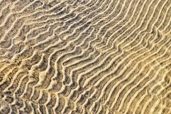 Sand ripples in shallow water Stock Photo
