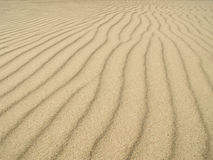 Sand ripples texture. Sand dunes made by means of wind Royalty Free Stock Photos