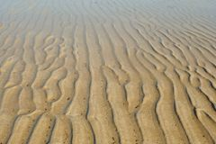 Sand ripples in water Royalty Free Stock Photo