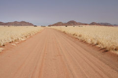 Sand Road. In the desert in Namibia stock photo