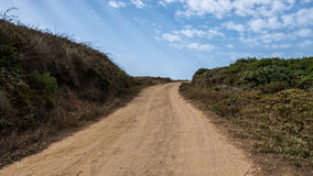 Sand road in Algarve. A sand road surrounded by trees leading through the portuguese Algarve Royalty Free Stock Photo
