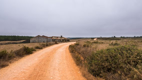 Sand road in Algarve. A sand road surrounded by trees leading through the portuguese Algarve Stock Photos
