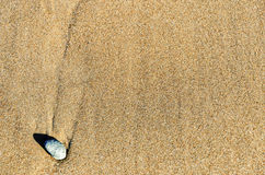 Sand and Rock Royalty Free Stock Photos