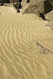 Sand and Rocks. Of the Curonian Spit royalty free stock photo