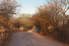 Sand rural road from nicaragua Stock Image