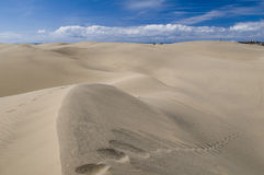 Sand from Sahara Royalty Free Stock Photo