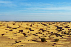 The sand of the Sahara Stock Image