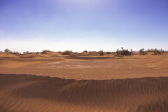 Sand in the Sahara Royalty Free Stock Photography