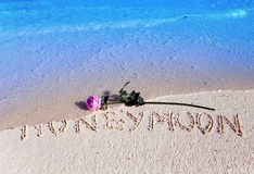 On sand on sea coast an inscription Honeymoon and a blossoming rose Royalty Free Stock Image