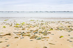 Sand seacoast of English Channel in Brittany Stock Photography