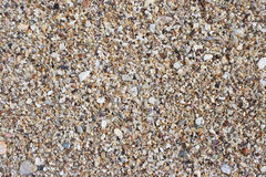 Sand from seashell Royalty Free Stock Image